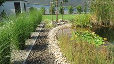 Modern kert, robot fűnyíróval, kertépítés ötletek Vineyard, Country Roads, Modern, Outdoor, Youtube, Outdoors, Trendy Tree, Vine Yard, Vineyard Vines