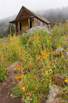 Small abandoned cabin in Animas Forks, CO. Old Abandoned Buildings, Abandoned Mansions, Old Buildings, Abandoned Places, Ghost Towns Of America, Old Farm, Haunted Places, Old Houses, Places To Go