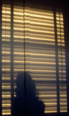 Blind stripes Bay Window Blinds, Sun Blinds, Roman Blinds, Blinds For Windows, Fitted Blinds, Aluminum Blinds, Roller Blinds, Golden Hour, Window Treatments