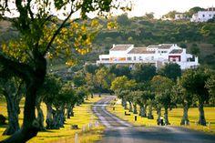 71 Wunderbare Bilder Zu Algarve In 2019 Algarve Portugal Und