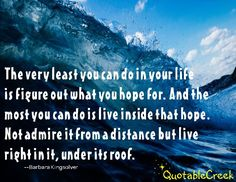 The very least you can do in your life is figure out what you hope for. And the most you can do is live inside that hope. Not admire it from a distance but live right in it, under its roof. --Barbara Kingsolver