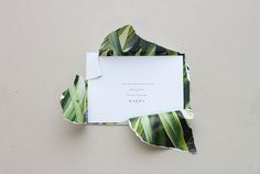 packaging surprise. White paper outside - flowers inside