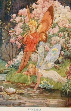 ilucion fairy