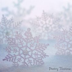 It's the start of the winter season in the Northern Hemisphere, and the first few flurries of snow are floating through the air. Snowflakes are a great reminder to pay attention to the small details in the world around you. Today, you can use snowflakes to inspire your poetry! Poetry Prompts, Poetry Books, Winter Season, Pay Attention, Snowflakes, Tapestry, Inspire, World, Inspiration