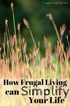 People may feel like frugal living is difficult when they are just starting to learn about budgeting and reducing spending in order to live a frugal life. However, once you've gotten over the initial hump of learning how to properly manage your finances, you'll find that frugal living actually simplifies your life in a number of different ways. Frugal living allows you to live with less stress. Reducing your consumerism allows you to learn more about yourself and to simplify your life goals.