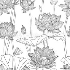Illustration of Linear seamless pattern - lotus flower. vector art, clipart and stock vectors. Art Lotus, Lotus Kunst, Lotus Drawing, Flower Art Drawing, Lotus Flower Art, Floral Drawing, Plant Drawing, Flower Wall, Flower Drawings