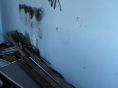 When most people are talking about black mold removal, they are referring to what is called toxic black mold. The problem is, most household molds are black, but not all black molds are toxic. You will also have some dark green, white, orange, and...