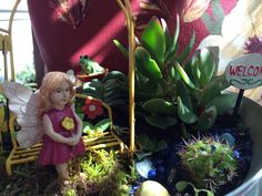 #fairygarden made w #Walmart set
