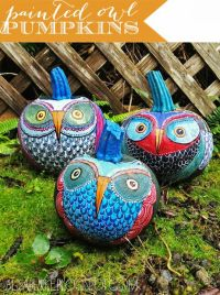 Love these! How-To: Painted Owl Pumpkins