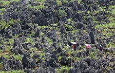 Ha Giang rocky plateau 4 days