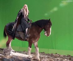 The Hobbit : the Battle of the Five Armies behind the scenes BTS - Lee Pace as Thranduil Legolas Und Thranduil, Lee Pace Thranduil, Aragorn, Tolkien Books, Jrr Tolkien, Lee Pace Movies, Elf King, Les Winx, O Hobbit