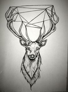 deer vs diamond