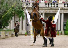 Escola Portuguesa de Arte Equestre nos Jardins do Palácio de Queluz