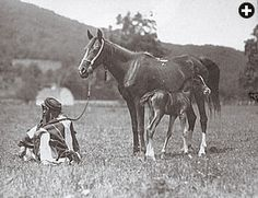"Wadduda—whose name, Hafiz explained to Davenport, means ""love"" or ""affection""—was Hafiz's original gift to Davenport, along with the services of her groom, Said Abdullah, who returned with Davenport to care for the horses at the Davenport Desert Arabian Stud in Morris Plains, New Jersey, where this photo was made."