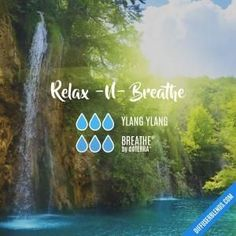 Relax -N- Breathe - Essential Oil Diffuser Blend by lenora