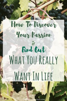 CLICK THE PIN TO LEARN how to discover your passion and find out what you really want in life! Go to TheTruthPractice.com to read about inspiration, authenticity, happy living, manifestation, getting rid of fear, intuition, self-love, self-care, words of wisdom, relationships, affirmations, finding passion, positive quotes, life lessons, and mantras.