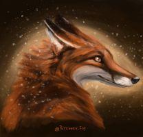Fox by Brennen-Fox