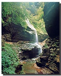 Watkins Glen New York Waterfall Nature Woods Scenery Wall Decor Art Print Poster Watkins Glen New York Waterfall Nature Woods Scenery Wall Decor Kunsttrykk plakat Frame Wall Decor, Frames On Wall, Framed Wall Art, Framed Art Prints, Wall Art Decor, Wall Décor, Beautiful Waterfalls, Beautiful Landscapes, Watkins Glen New York