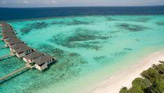http://travelcentremaldives.com/maldives-blog/discover-restful-havens-amari-havodda-maldives  Discover the restful havens of Amari Havodda Maldives