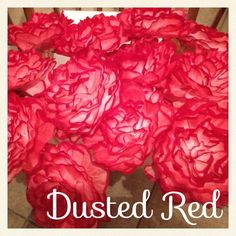 maybe a few in silver and gold and red...Hometalk :: Coffee Filter Flowers