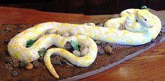 12 long snake cake