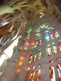 the stained glass from Gaudi's Sagrada Familia. ( H.I.S. Japan)