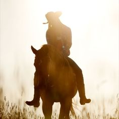 I may have only ridden a horse a handful of times, but it doesn't take much to understand the bond you get with your horse. I miss riding so much and wish I could find a place to continue, not for sport, just for the love and joy of riding.