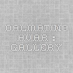 Dalmatino Hvar : GALLERY