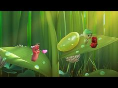 The Best Larva Cartoons New compilation 2016 ►◄ Best episodes #5 - YouTube