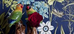 Quail Ceramics - hand-crafted collectables