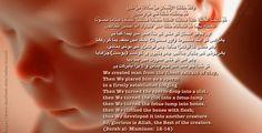 http://www.youtube.com/watch?v=sYajKl-Xr6c Surah Mu'minun recitation with English Translation http://www.youtube.com/watch?v=JdD_VVJqPAc