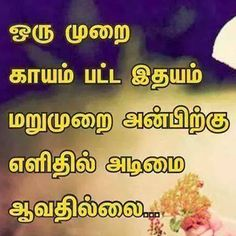 Life Failure Quotes, Enjoying Life Quotes, Tamil Love Quotes, Golden Quotes, True Quotes, Qoutes, Broken Relationships, Facebook Image, True Words