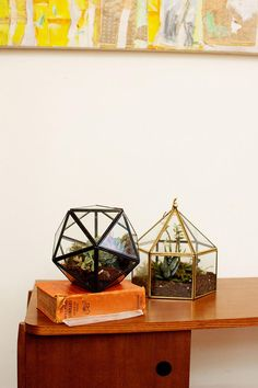 Turning Triangles Terrarium from Urban Outfitters Urban Outfitters Room, Earthy Home Decor, Glass Terrarium, Terrarium Plants, Dream Apartment, Humble Abode, Dorm Decorations, My Dream Home, Interior And Exterior