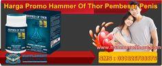 Harga Promo Hammer Of Thor Pembesar Penis - Hammer Of Thor Thors Hammer, Text Posts