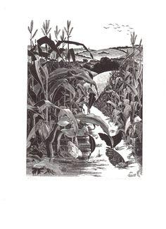 """Sarah Van Niekerk (1934- ) """"Saltway"""" wood engraving. Signed, titled and numbered 68/100. 203 X 150 mm."""