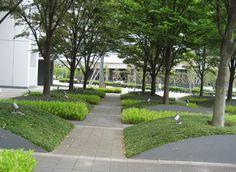 MLS, Inc Mitani Landscape Studio Urban Landscape, Landscape Design, Plant Design, Garden Design, Public Space Design, Raised Planter, Love Garden, Parking Design, Yard Landscaping
