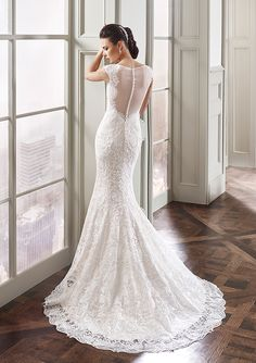 Eddy K. Milano MD188: Fit-n-flare, illusion neckline and back, Venice lace wedding dress. Available in Ivory-Light Gold / Ivory-Silver