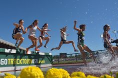 2015 NCAA Track and Field Championships