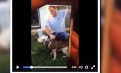 Please sign petition for the two monsters who did this get the maximum penalty! A dog's throat was slit after being tortured and repeatedly stabbed. A video of…