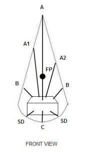 Vertical - Basic arrangement forms in floral designing - a tall arrangement with small width. It can be a classic vertical arrangement or an interpretive vertical arrangement. Flower Arrangement Designs, Beautiful Flower Arrangements, Flower Designs, Beautiful Flowers, Arrangements Ikebana, Wedding Arrangements, Floral Arrangements, Wedding Centerpieces, Arte Floral