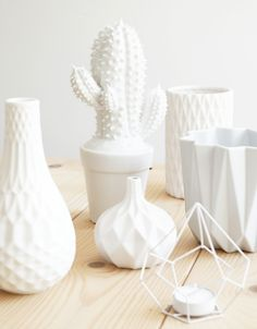 Very nice cacti vase in white / Living Roots