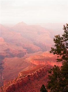 grand canyon forest fire sunset by rebusfilm on Flickr.