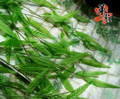 Aliexpress.com : Buy High artificial vine 1.8 meters anthoxanthin rattails wicker silk can DIY for home garden shop store decorative free shipping from Reliable loofah suppliers on Lore 's Decoration Flowers Store. $53.99