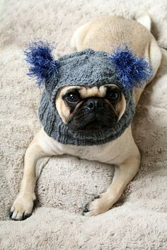 Snuggly Pug Alien Hat by jessicalynneart on Etsy