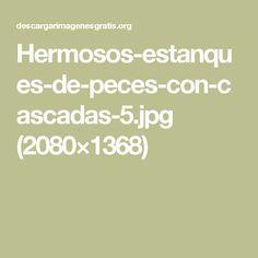 Hermosos-estanques-de-peces-con-cascadas-5.jpg (2080×1368)