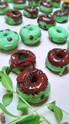 Vegan mini mint chocolate chip donuts