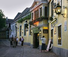 Heuriger Wien | Heuriger (Traditional Inn) in Grinzing : Wine Taverns of Vienna. If Oktoberfest sounds good to you but is a bit overwhelming, try Grindzing, Austria - outside of Vienna and an hour away by  trolley - for a taste of the famed festival but a bit more pleasant. When the 'new wines' are being poured, just find a table with a couple of empty seats and join in. Memorable experience.