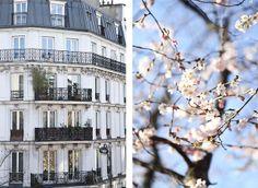 Paris: La Promenade Plantée