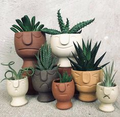 Plant decoration / Pflanzen Liebe Bester Kaktus und Sukkulent How to select the right color clothes? Ceramic Pottery, Pottery Art, Ceramic Art, Pottery Ideas, Cacti And Succulents, Planting Succulents, Succulent Planters, Cactus Plants, Succulent Containers