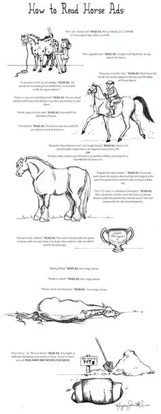 How To Read Horse Ads (so true)